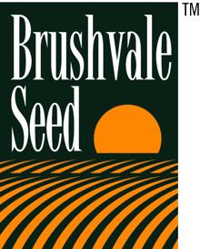 Brushvale Seed